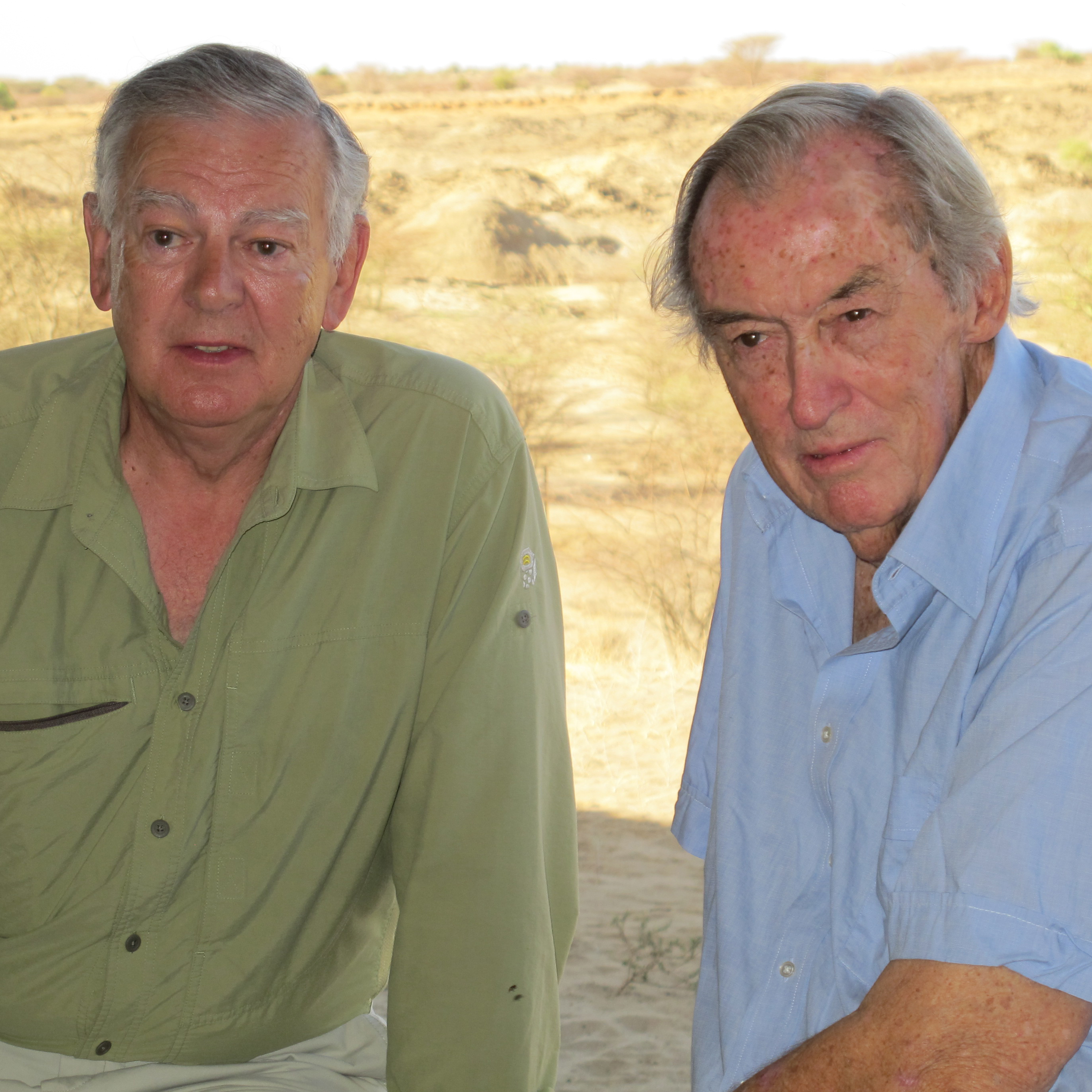 a biography of donald johanson and his contribution to paleoanthropology